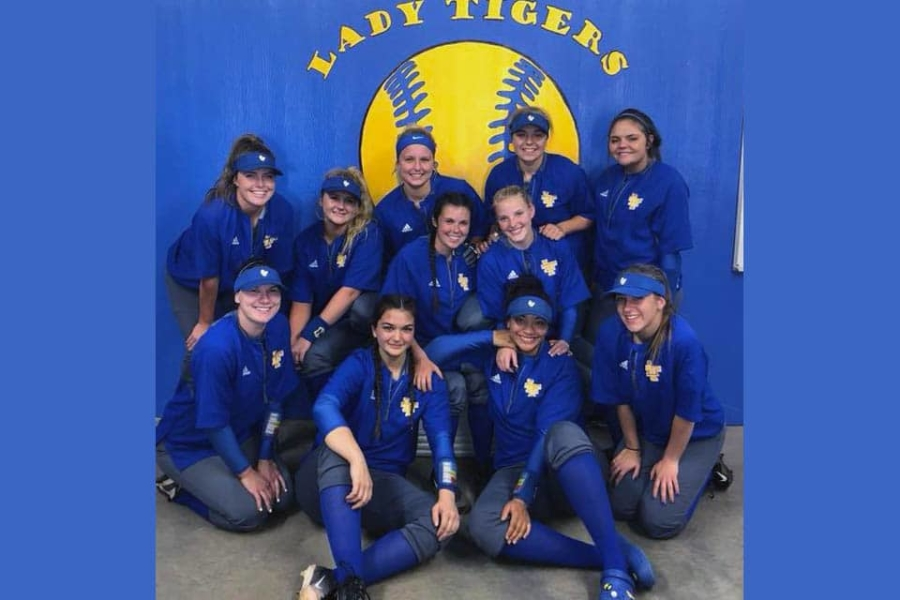 Lady Tigers Softball, 2017-18 District Champions.